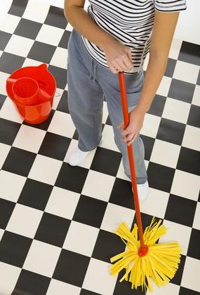 Homos domesticus: delicias de la limpieza del hogar